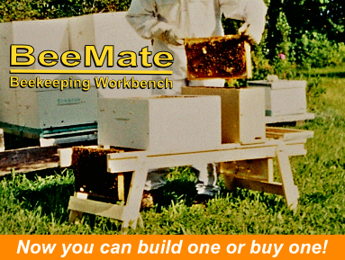 beemate-build-or-buy-383x288.jpg