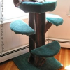 Cat Tree Plans and Ideas