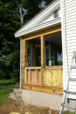 New framing to repair damage by carpenter ants
