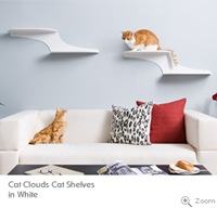 cat-clouds-cat-shelf-walk-3