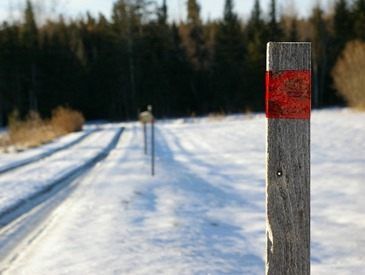diy-winter-driveway-markers-pm