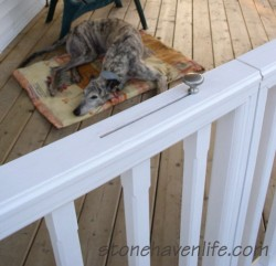 no-sag-pet-gates-for-porch-or-deck-stonehavenlife