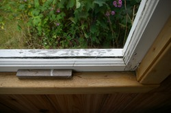 original single pane wood sash