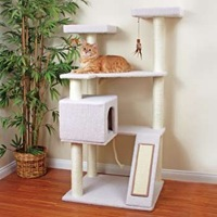 petco premium tree terrace - amazon