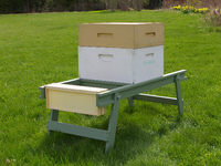 projects-for-beekeepers