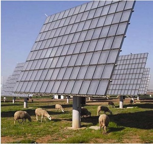 sheep graze below solar array in India - (CC BY 2.0) by faul